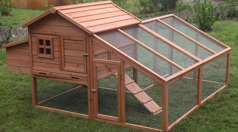Gallineros de madera para criar nuestras propias gallinas - Prefabricados de madera ...