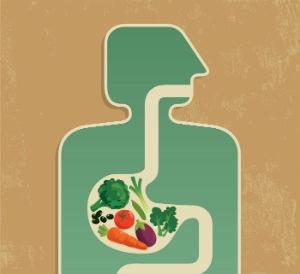 Productos naturales para mejorar la digestion
