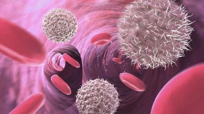 que indican monocitos altos
