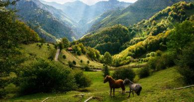 turismo rural en Asturias