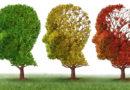 La importancia de la estimulación cognitiva en el tratamiento del Alzheimer