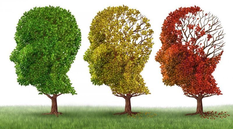 Importancia de la estimulacion cognitiva en el tratamiento de Alzheimer