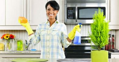 La limpieza en el hogar y en el trabajo