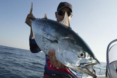 La mejor tecnologia aplicada a la pesca