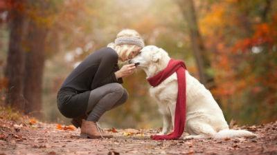 El hombre y el perro