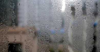 La humedad que enferma