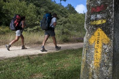 Camino de Santiago Pilgrim