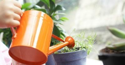 Bombillas de bajo consumo para cultivos