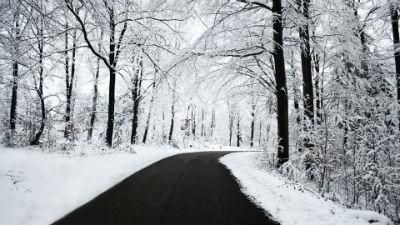 Donde encontrar neumaticos de invierno