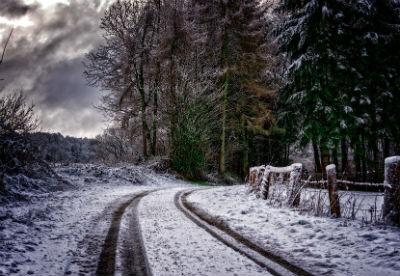 Neumaticos para invierno