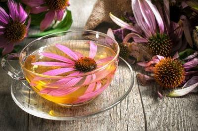 Hierbas y especias para curar el herpes genital