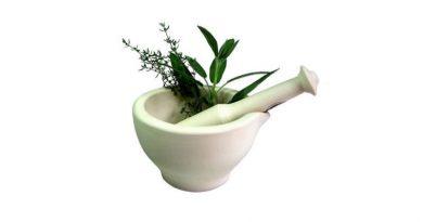 Tendencias salud plantas medicinales