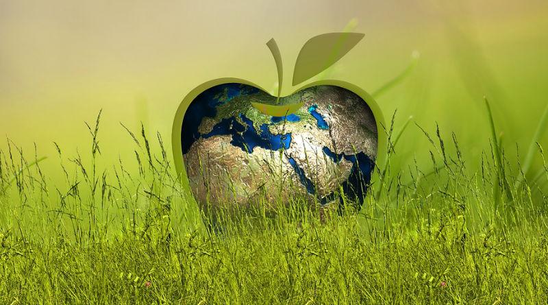 Datos energias renovables