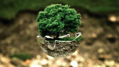 Grandes empresas ecologistas