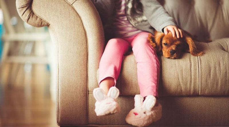 Limpieza hogar con mascotas