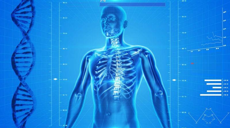 Qué Estudia la Medicina? - El Cosmonauta
