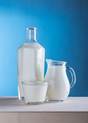 Alimentacion y leche