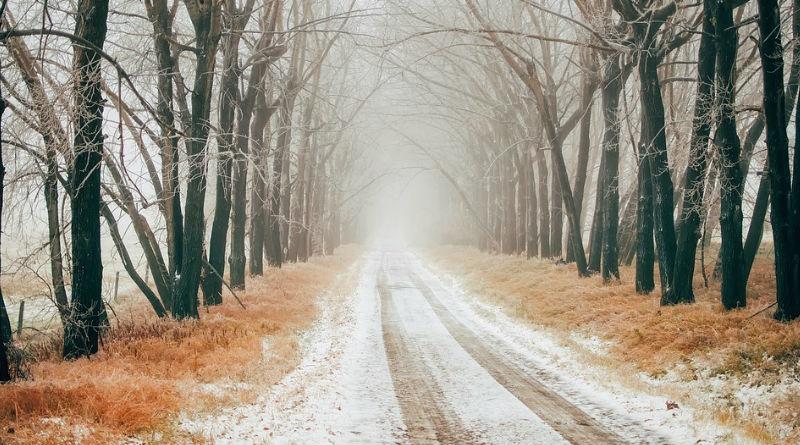 Mejores tipos de neumaticos de invierno