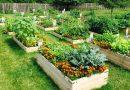 El jardín, el espacio más versátil del hogar