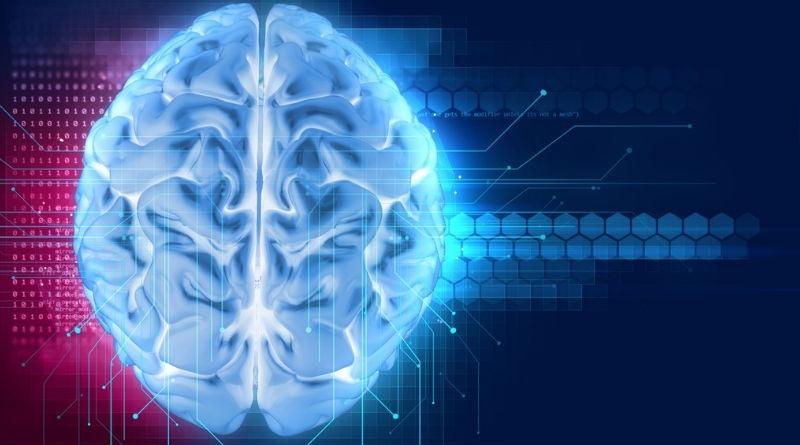 La importancia del Sistema Nervioso