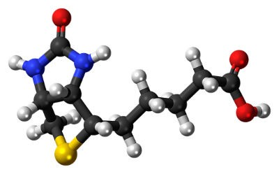Biotina o Vitamina b7