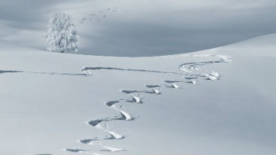 Mejores estaciones de esqui en Espana