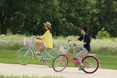 Rutas de Valencia para hacer en bicicleta