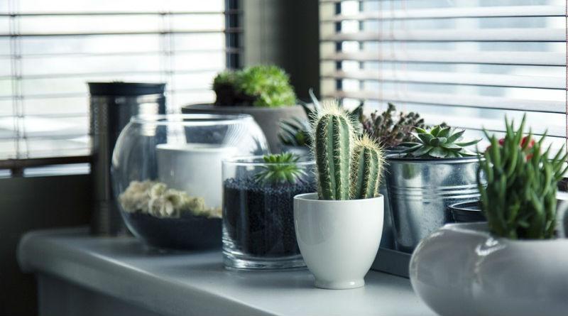 articulos de vidrio ideales para tu hogar o negocio