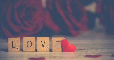 Alimentar el amor todos los dias