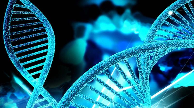 Prueba de ADN