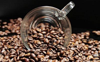 Que dicen los medicos sobre el cafe