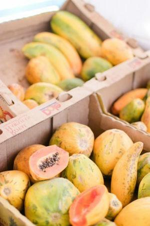 Papaya vitamina C