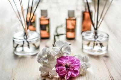 Olores y aromas