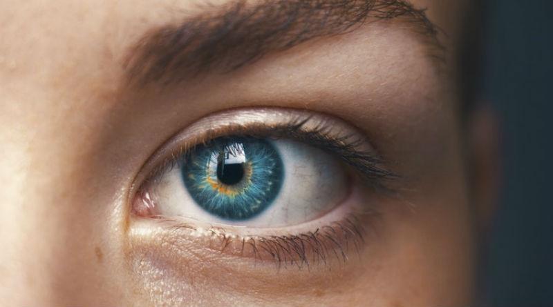 Parte del ojo que capta la luz