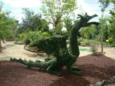 El dragon del Bosque Encantado