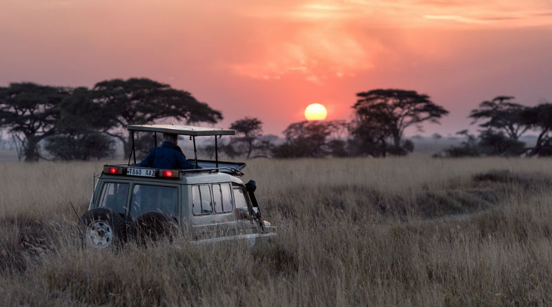 Viaje de safari a Tanzania y kenia