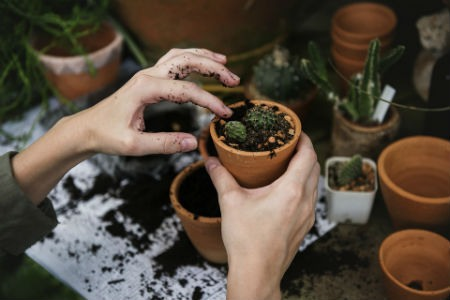 herramientas para el cuidado del jardin
