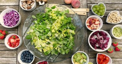 La importancia de una nutrición de calidad