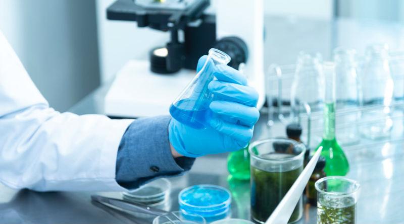 Tests geneticos de ancestros