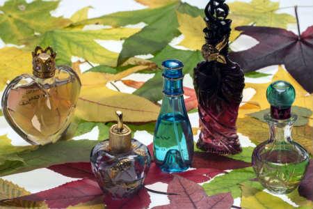 perfumes varios