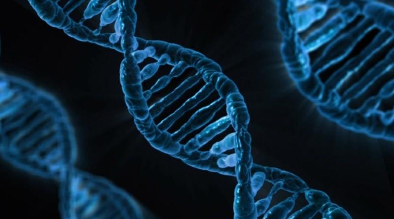 Genes que predisponen padecer cáncer